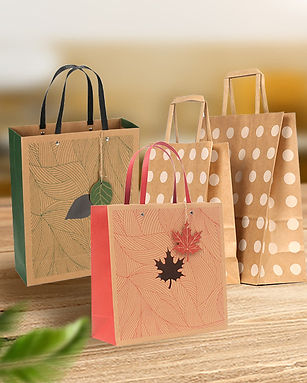 Kraft paper gift bag with handles wholes