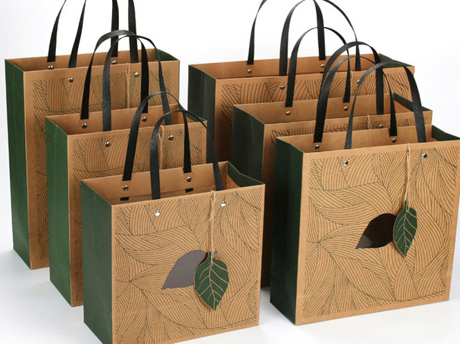 Custom printed kraft gift bags with paper handles and hangtag wholesale