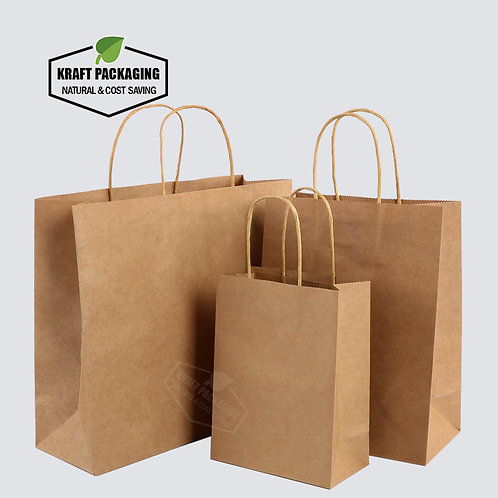 COLORFUL Natural Kraft paper gift bags with paper string handle in 3 sizes