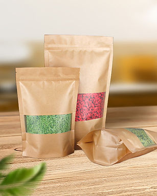 Kraft paper zipper pouch bags wholesale in various style and sizes
