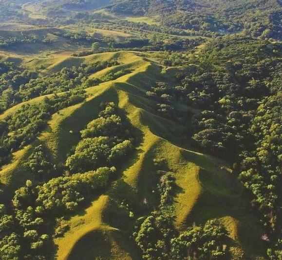 LHPS aerial view of Sylvan Runkel State Preserve photo by Ed   Weiner.jpg