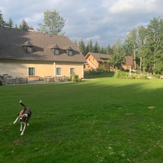 Forsthaus und Gästehaus