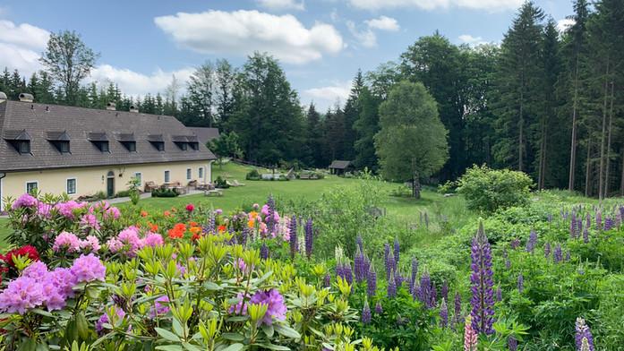 Frühlingsstimmung im Garten