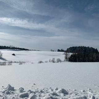 Winterlanschaft