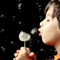Blowing flower seeds, encourage meditation with YummyMeChocs