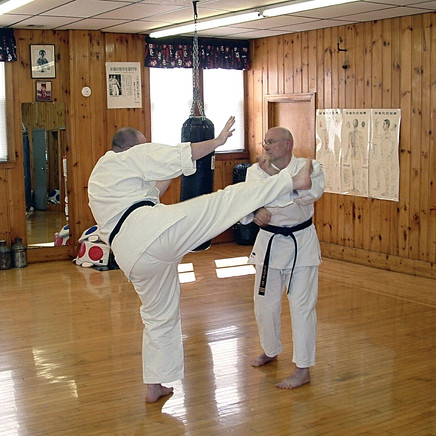 Uechi-Ryu Karate Student