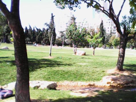 Sukkot 2014 middle 033