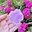 Thumbnail: Sakura mold