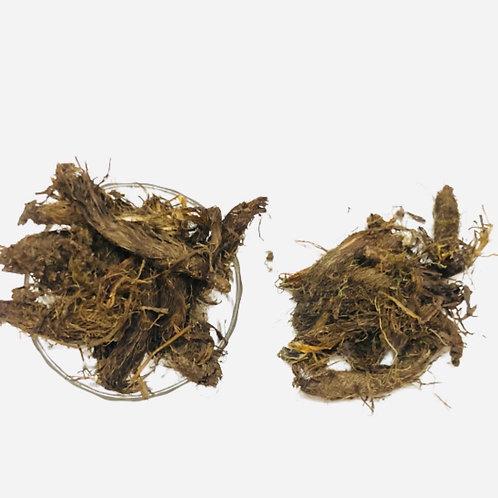 Sattvic Organics Jatamasi Root