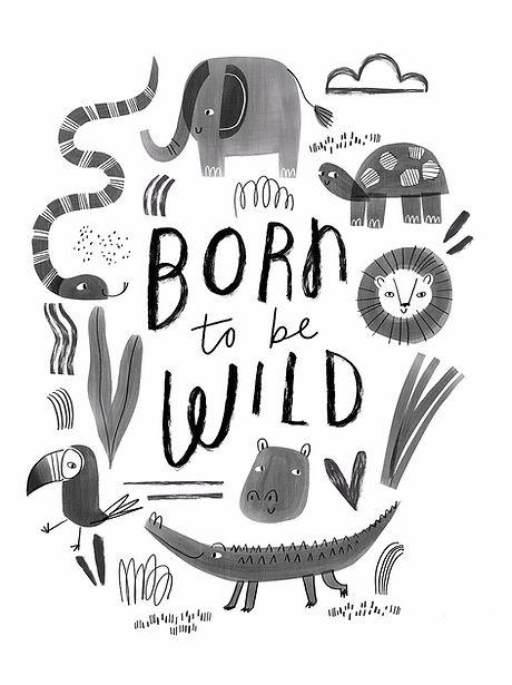 Animal Print Illustration.jpg