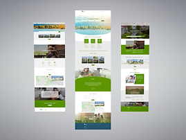 GoFresh Homes - Website Mockup Options