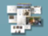 Free-Website-Mockup-Design-For-Presentat