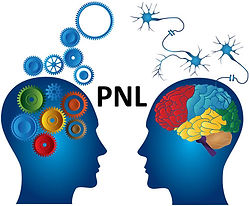 pnl-2.jpg