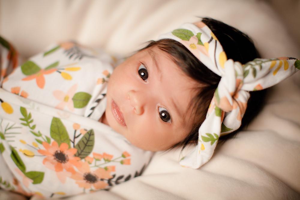 newborn portrait, studio