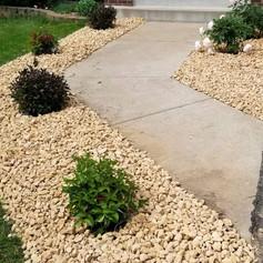Schrub Planting with 1.5 Buff Limestone