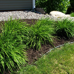Chocolate Brown Mulch With Rock Backdrop
