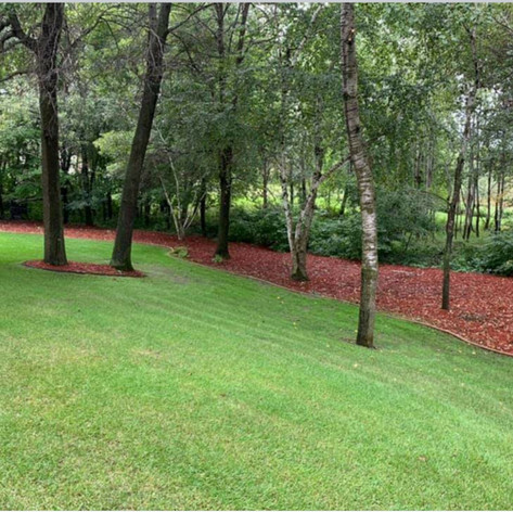 Red Mulch With Paver Edgeing and Weed Barrier