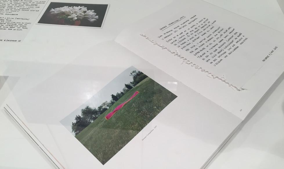 """""""T'ESCRIC UN PAISATGE"""" a Vilafranca, un projecte de Montse Casacuberta i Mariona Garci"""