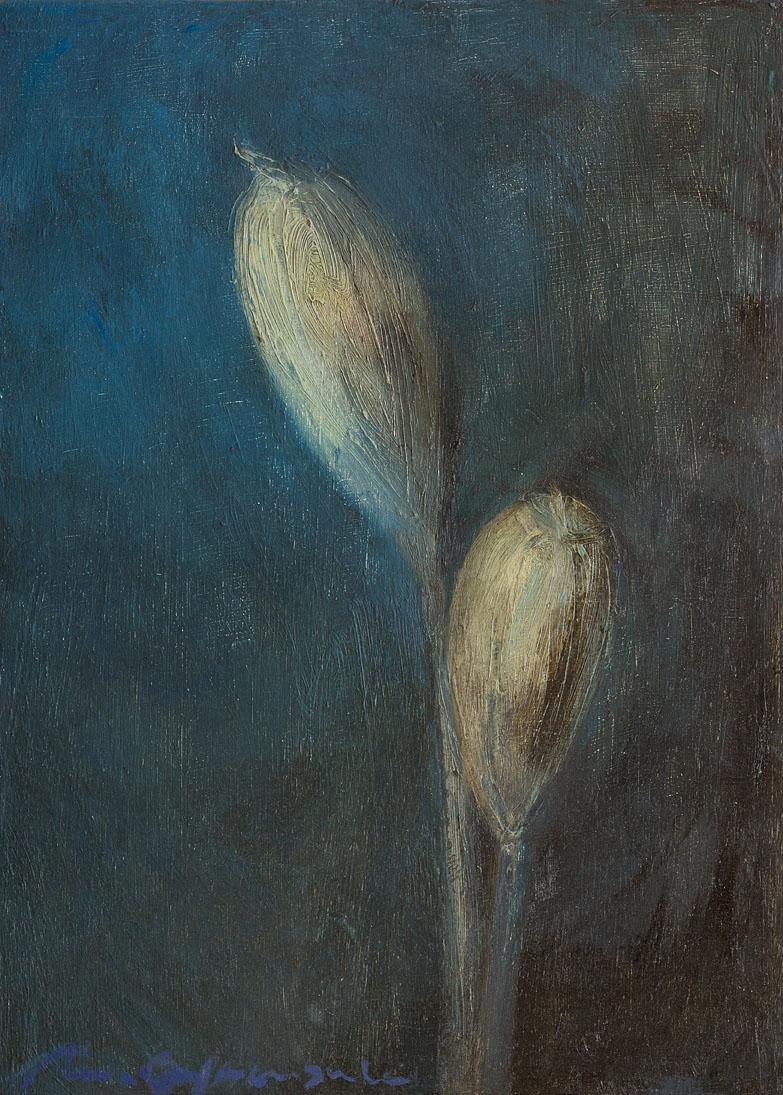 Flors seques