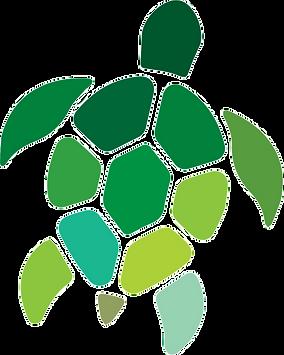 Sea%20Turtle_logo_Final_edited.png