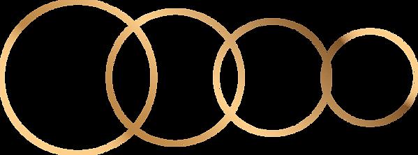 circle_raster_gold (14).png