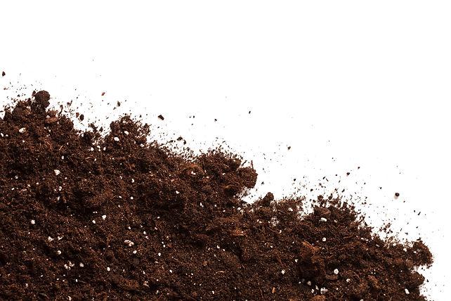 Soil on the white.jpg