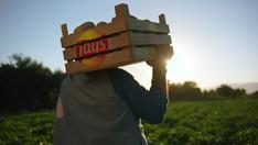 Lay's, Tarımsal Sürdürülebilirlik Alanında Önemli Adımlar Atmaya Devam Ediyor