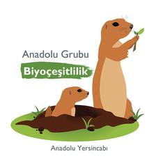Anadolu Grubu'ndan Anadolu Yersincabı Biyoçeşitlilik Projesi