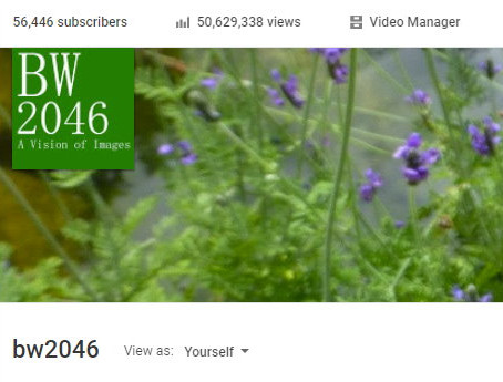 BW2046 YouTube 頻道點擊次數已超越五千萬, 訂戶數達五萬六千人
