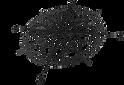 logo%20(1)_edited.png