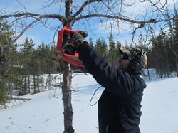 Tim trail cams