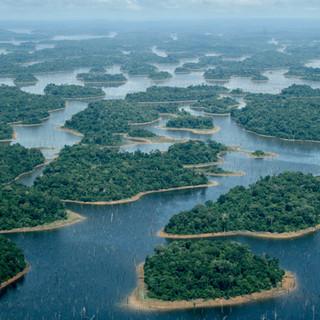 Hydropower & Fragmentation