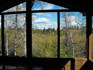 #328 View from Screened Porch.JPG