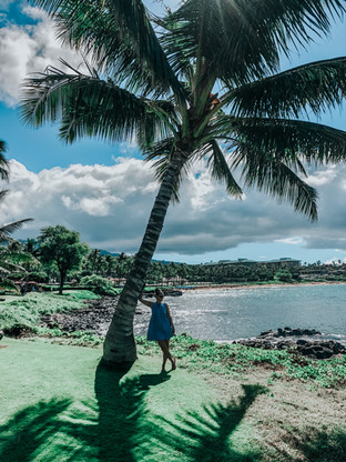 DO'S AND DONT'S OF VISITING MAUI