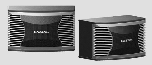 ENSING 燕聲 12吋低音喇叭 SX-350