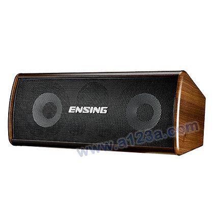 ENSING燕聲 高級中置喇叭 ESP-500
