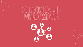 Collaboration with Educational Paraprofessionals