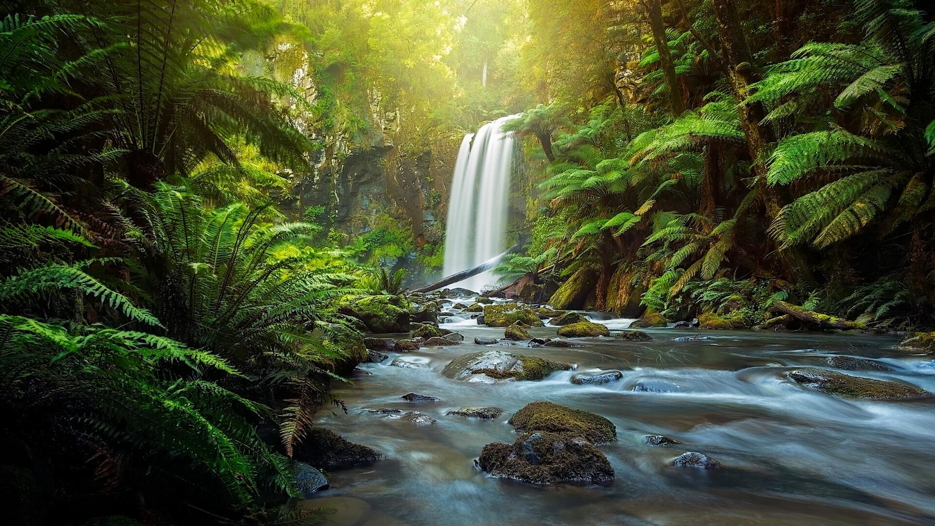 Australia 8