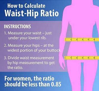 waist to hip ratio pic.jpg