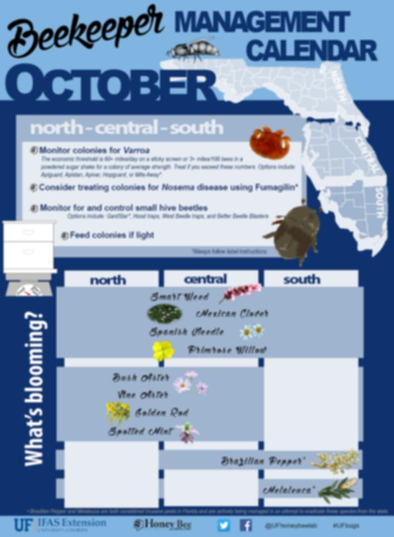 BeekeepingManagementCalendar_October.png