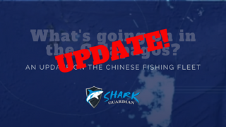 Chinese DWF in the Galapagos: good news!
