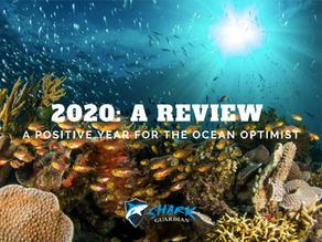 2020's wildlife wins and ocean achievements!