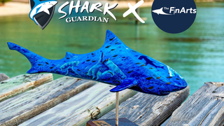 Shark Guardian and The Finarts
