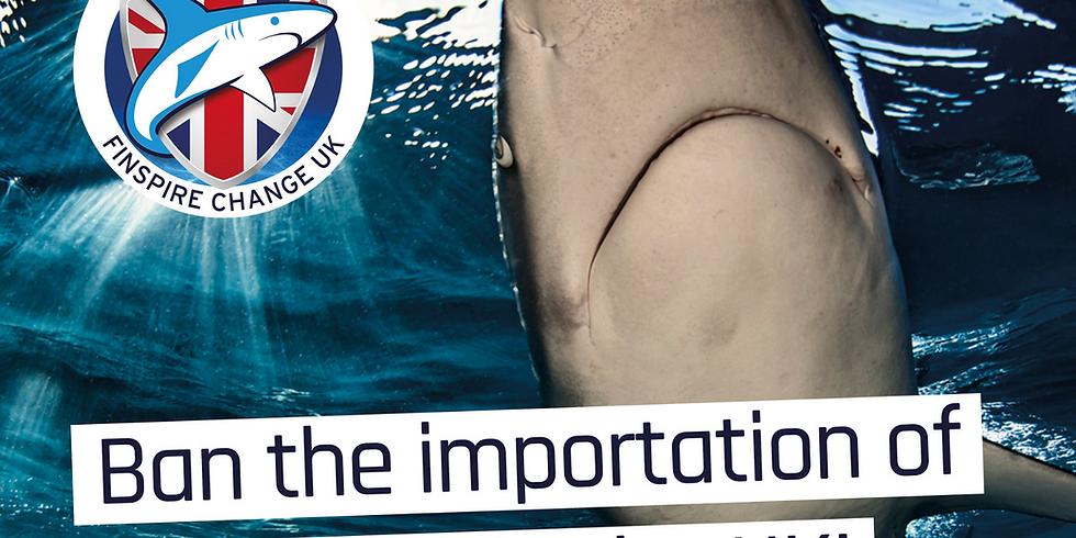 BSAC & Shark Guardian Webinar: Shark Guardian leading the UK community to protect sharks