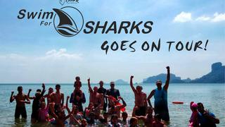 Shark Guardian's Swim for Sharks goes International