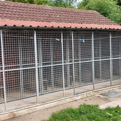 Cattery exterior (close-up)