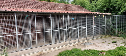 Cattery exterior showing their sleeping area and outdoor area.jpg