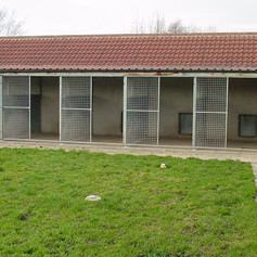 Kennels and their outdoor area
