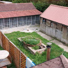 Cattery exterior