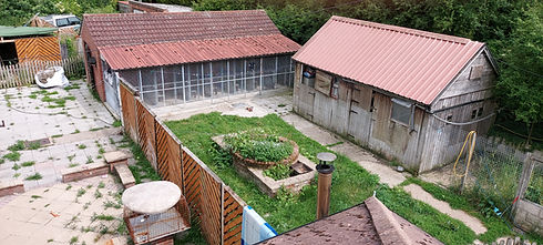 exterior picture of the cattery